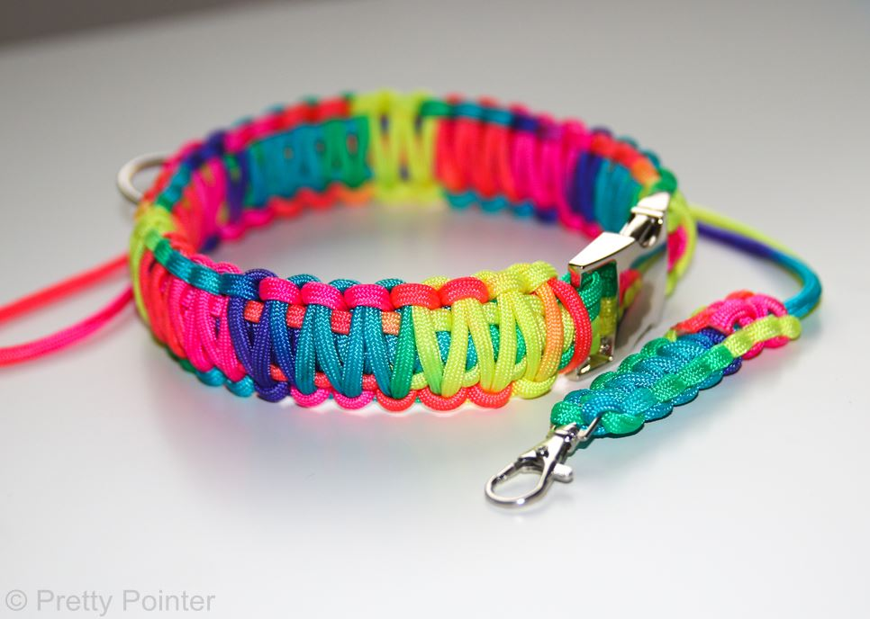 Paracord Collars Pretty Pointer